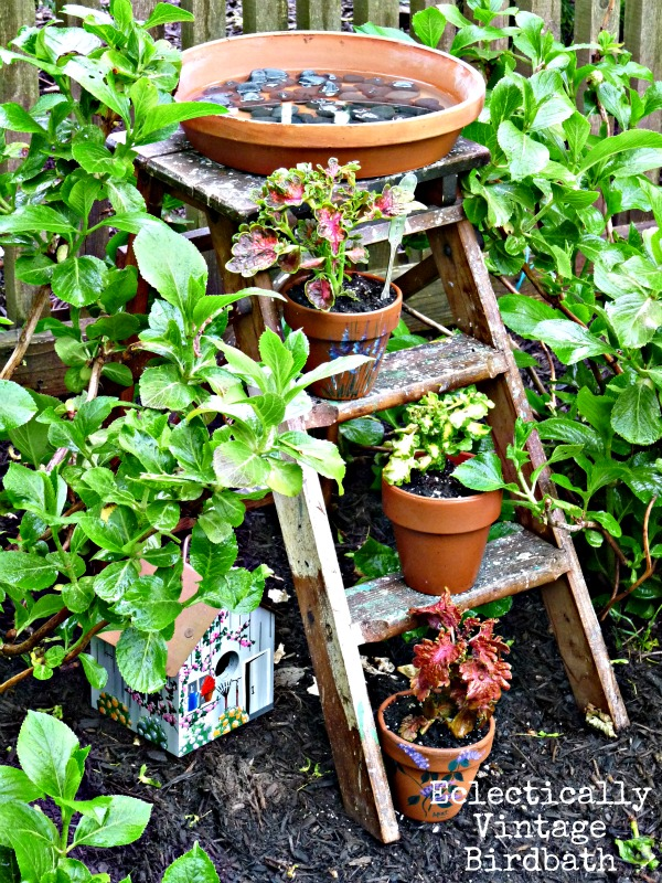 Very unique bird bath idea - stepladder birdbath - this is really for the birds!  kellyelko.com