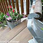 My Garden Grows – in a Mop Bucket?!