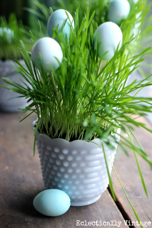 Grow Your Own Spring Centerpiece www.kellyelko.com