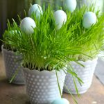 Grow Your Own Springtime Grass Centerpiece