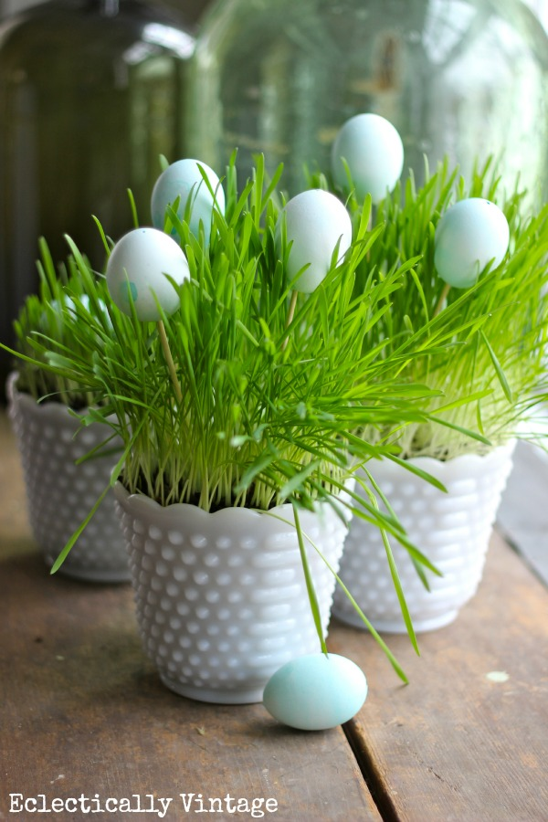 Grow Your Own Spring Grass Centerpiece www.kellyelko.com