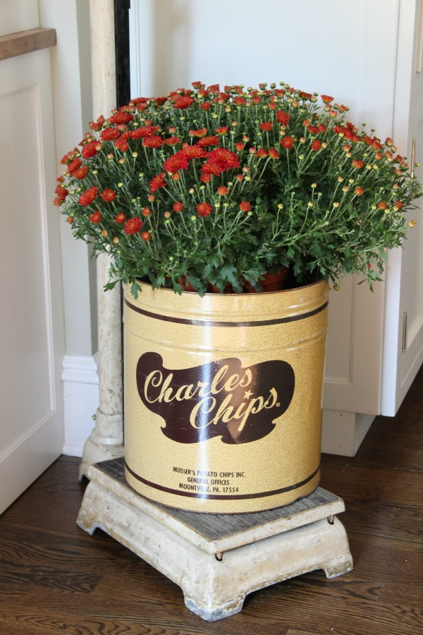 Love this vintage Charles Chips tin used as a fall planter kellyelko.com