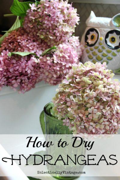 How to Dry Hydrangeas kellyelko.com