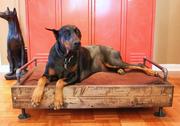 Make an industrial dog bed! kellyelko.com