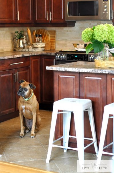 Beautiful kitchen - love the barstools kellyelko.com