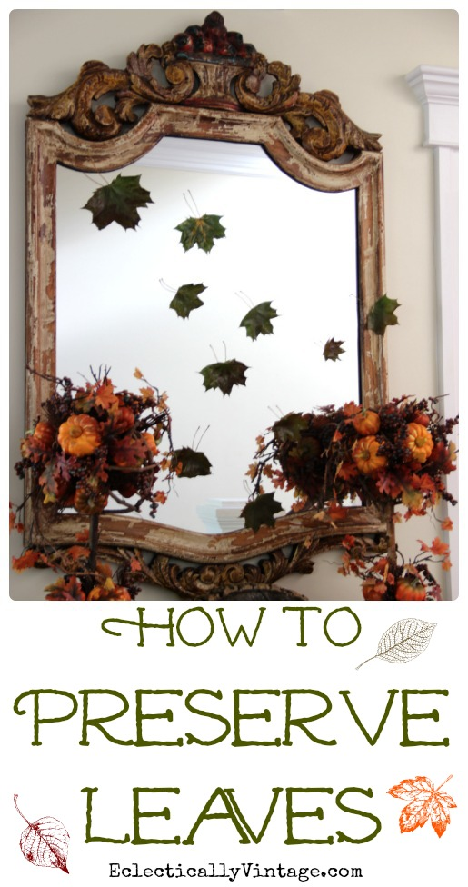 How to Preserve Leaves - perfect for crafts and decorating kellyelko.com