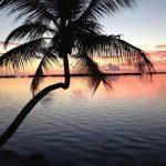 Paradise Found – Miami to Key West Road Trip