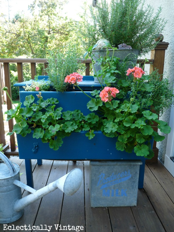 Simple Gardening Tips - love this DIY dresser planter filled with plants and herbs kellyelko.com #containergardening #thrift #vintagedecor #upcycle #repurpose #gardening #gardeningtips #greenthumb