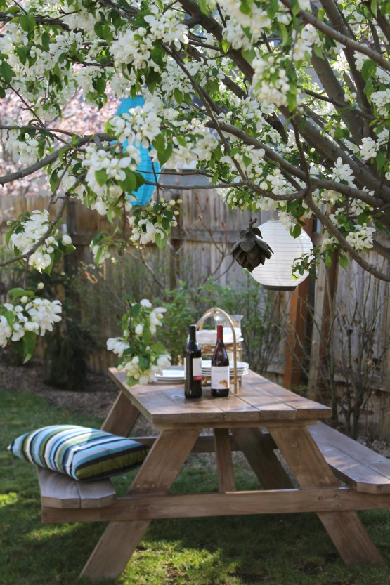A flowering tree is the perfect place for a picnic
