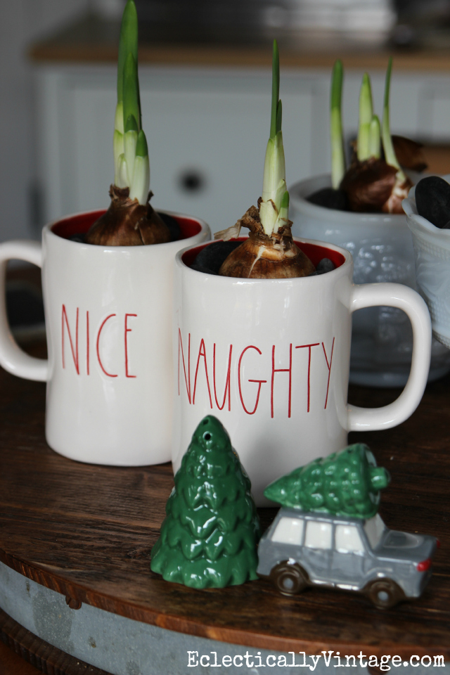 Love the naughty and nice Christmas mugs filled with paperwhites and how fun is that car and tree salt & pepper set! kellyelko.com