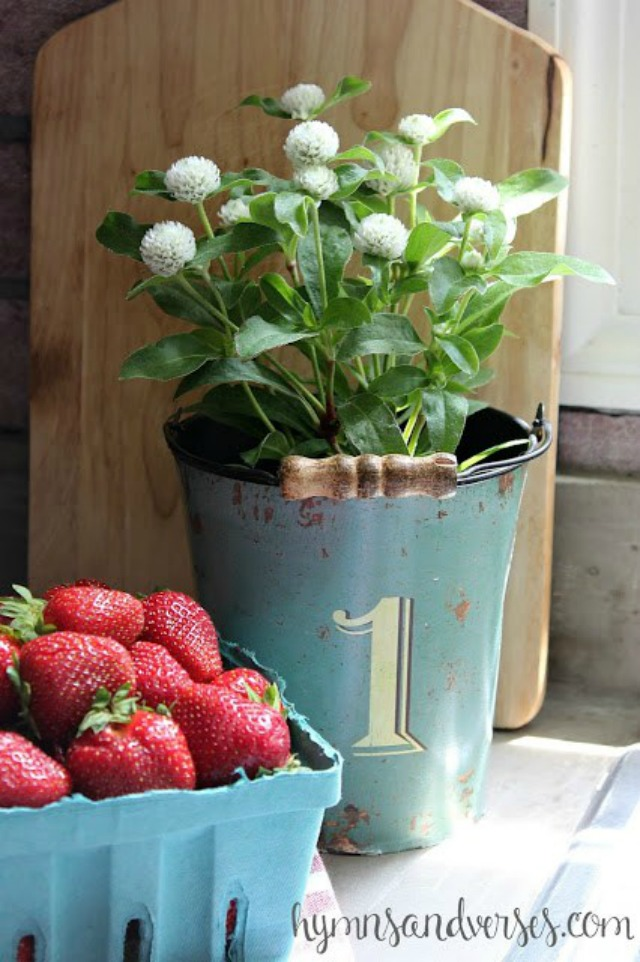 Berries and flowers in the kitchen kellyelko.com