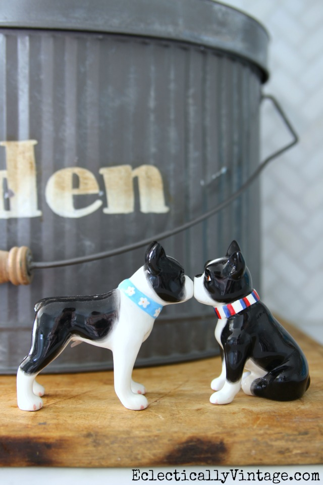 Kissing Boston Terrier salt and pepper shakers kellyelko.com #bostonterrier