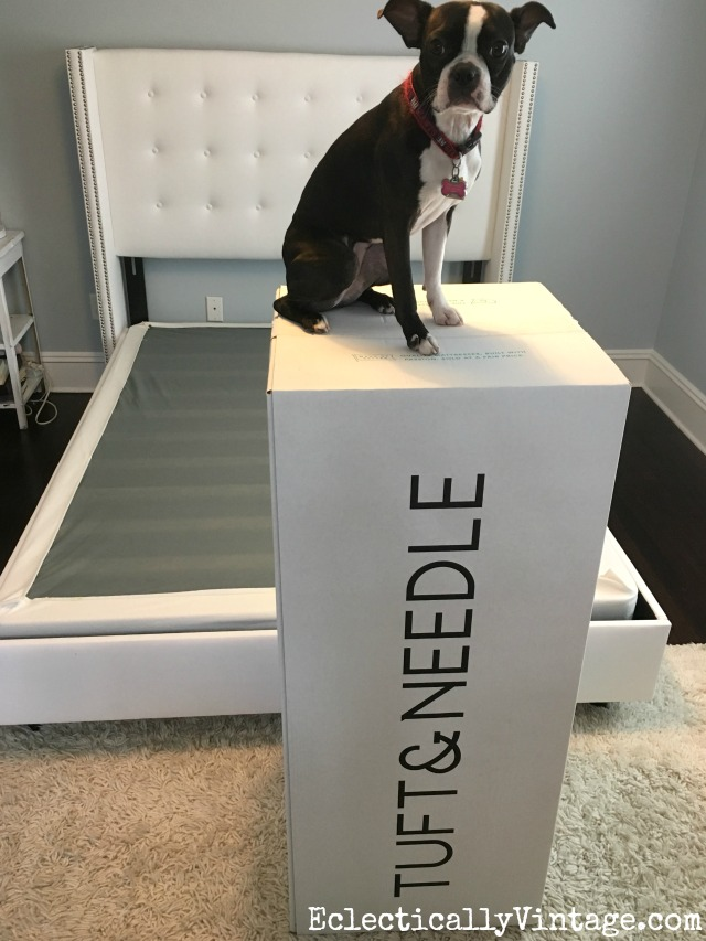 Sweet Dreams Tuft And Needle Mattress Review