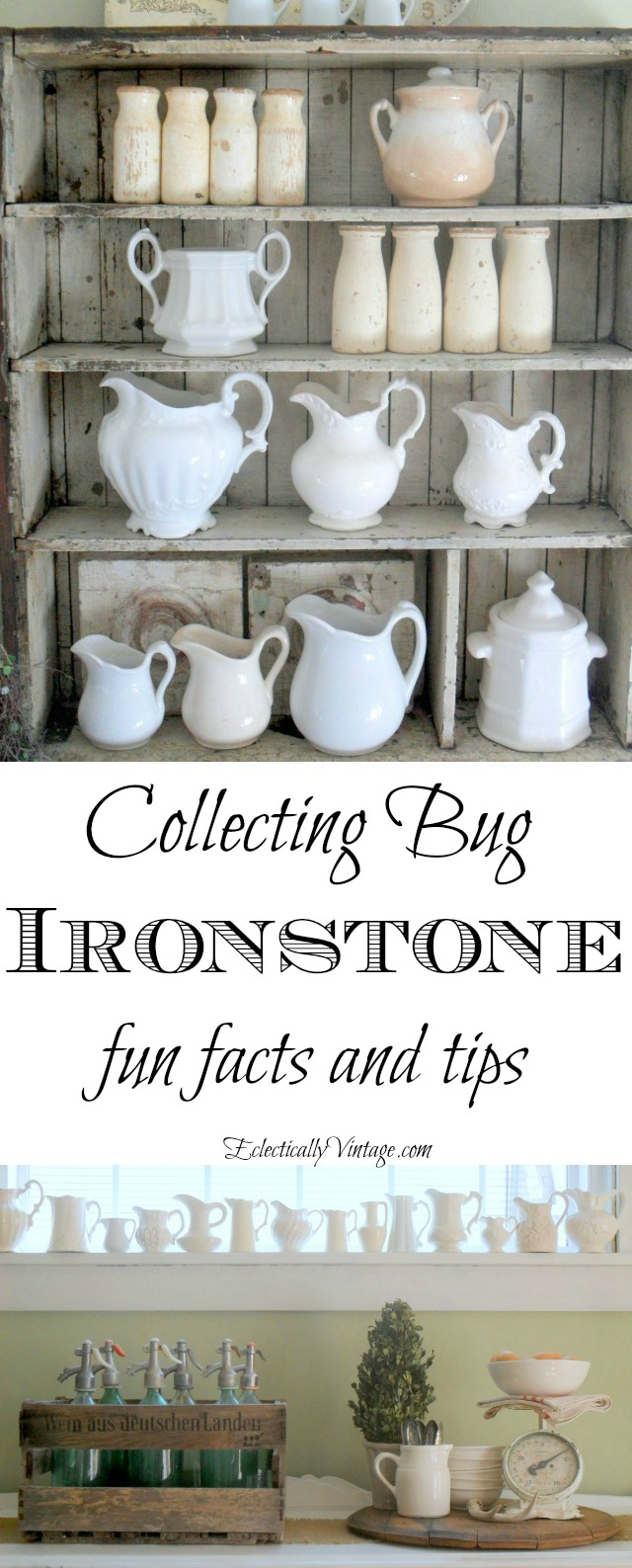 collecting bug collecting ironstone