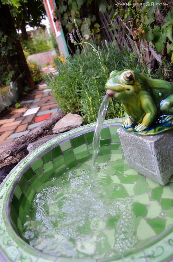 Whimsical frog fountain kellyelko.com