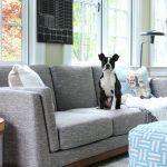Sunshine & Happiness – New Sunroom Sofa