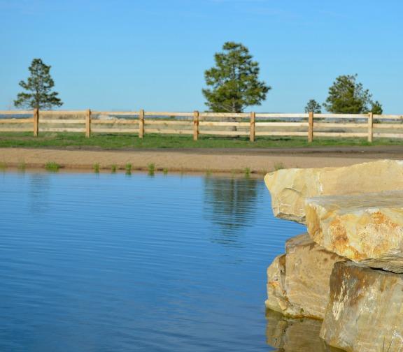 Beautiful pond kellyelko.com