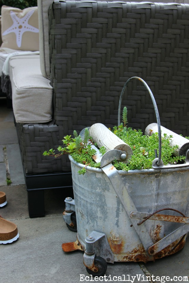 Love this old mop bucket planted with succulents kellyelko.com