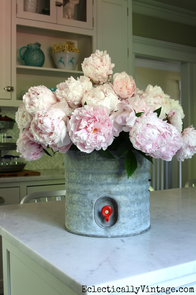 Pink peonies in a vintage galvanized water cooler! She's got greta tips for growing these beauties kellyelko.com