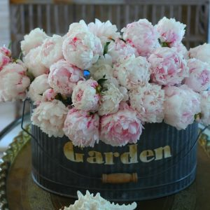 peonies, flower arranging, flower frot