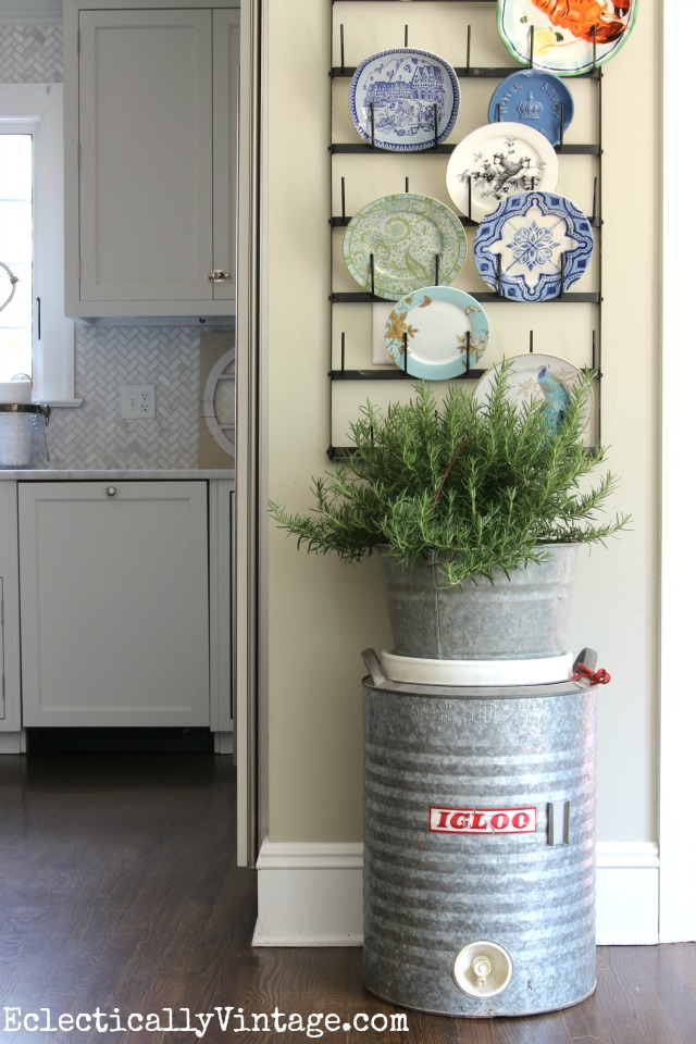 Love this vintage galvanized Igloo cooler used as a plant stand! kellyelko.com