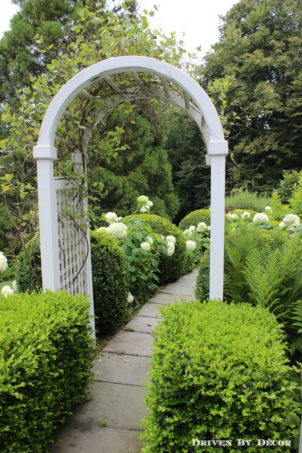 Love this arbor leading to the garden filled with hydrangeas kellyelko.com