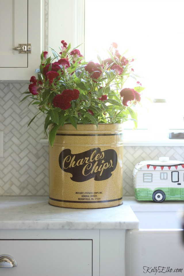 Love this vintage Charles Chips container as a planter for fall flowers kellyelko.com