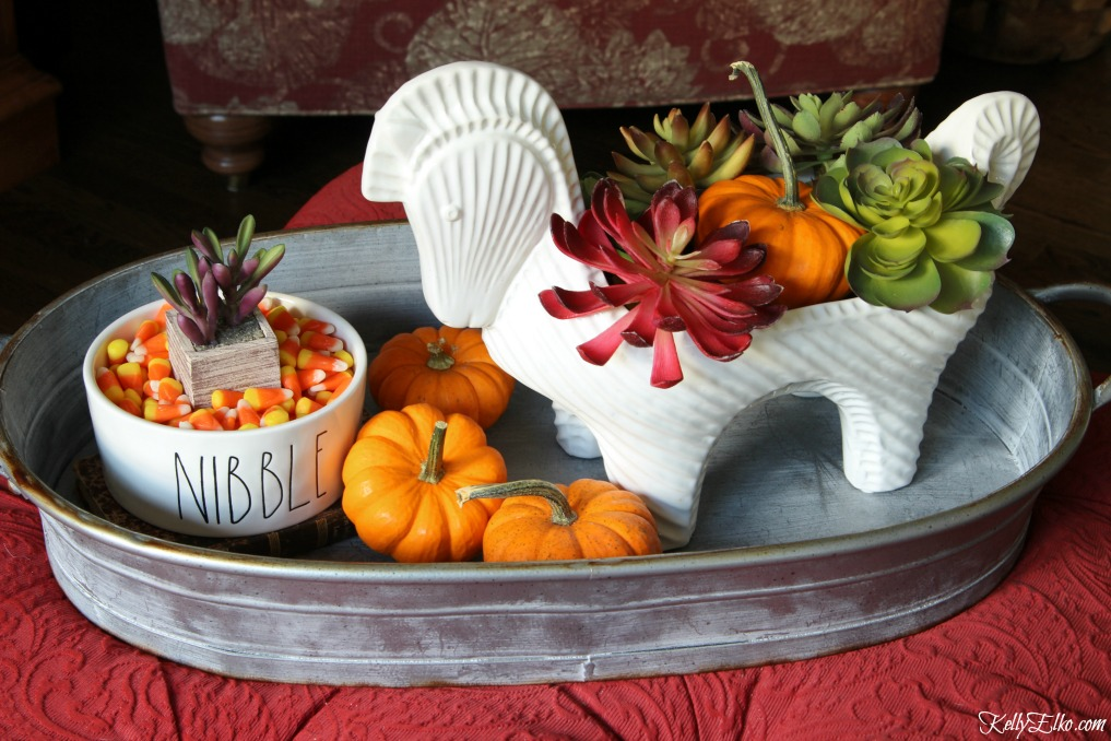 Love this cute horse planter filled with succulents and a pumpkin kellyelko.com