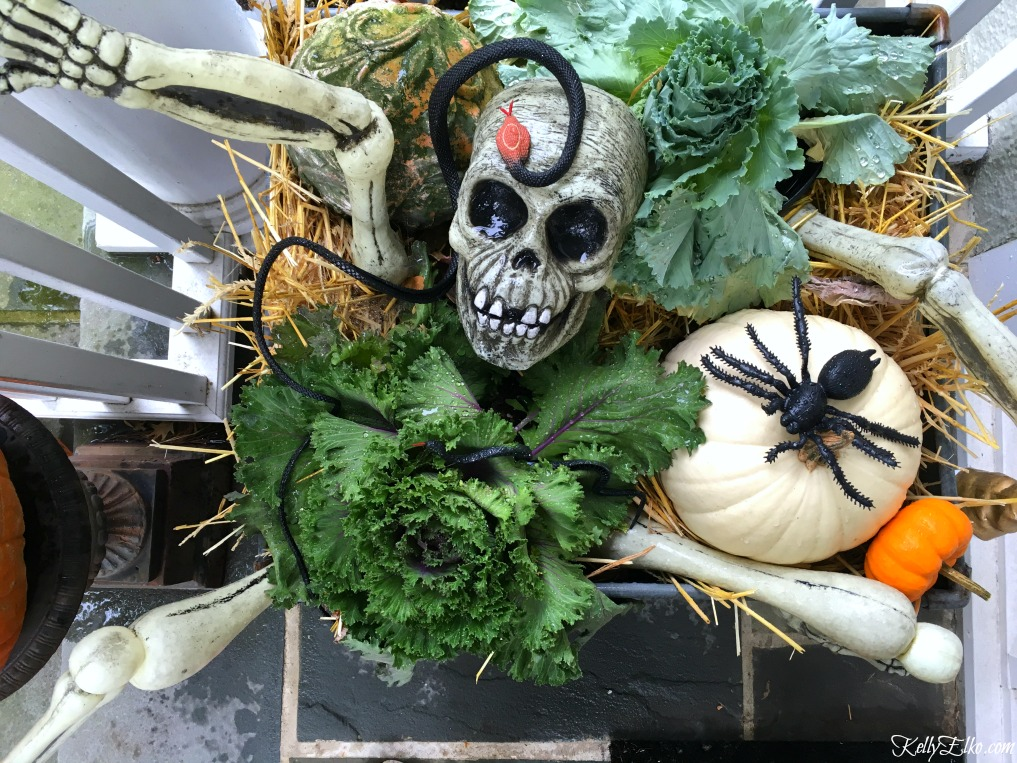 Love this skeleton planter with cabbage plants and pumpkins on this fun Halloween porch kellyelko.com