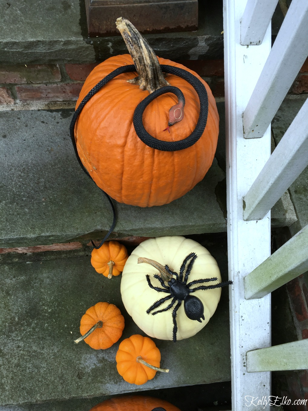 Add plastic snakes and spiders to pumpkins for Halloween kellyelko.com