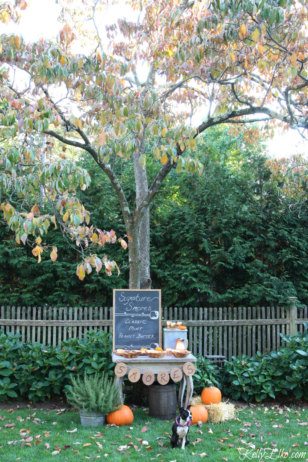 Fall s'mores bar - love the chalkboard menu kellyelko.com