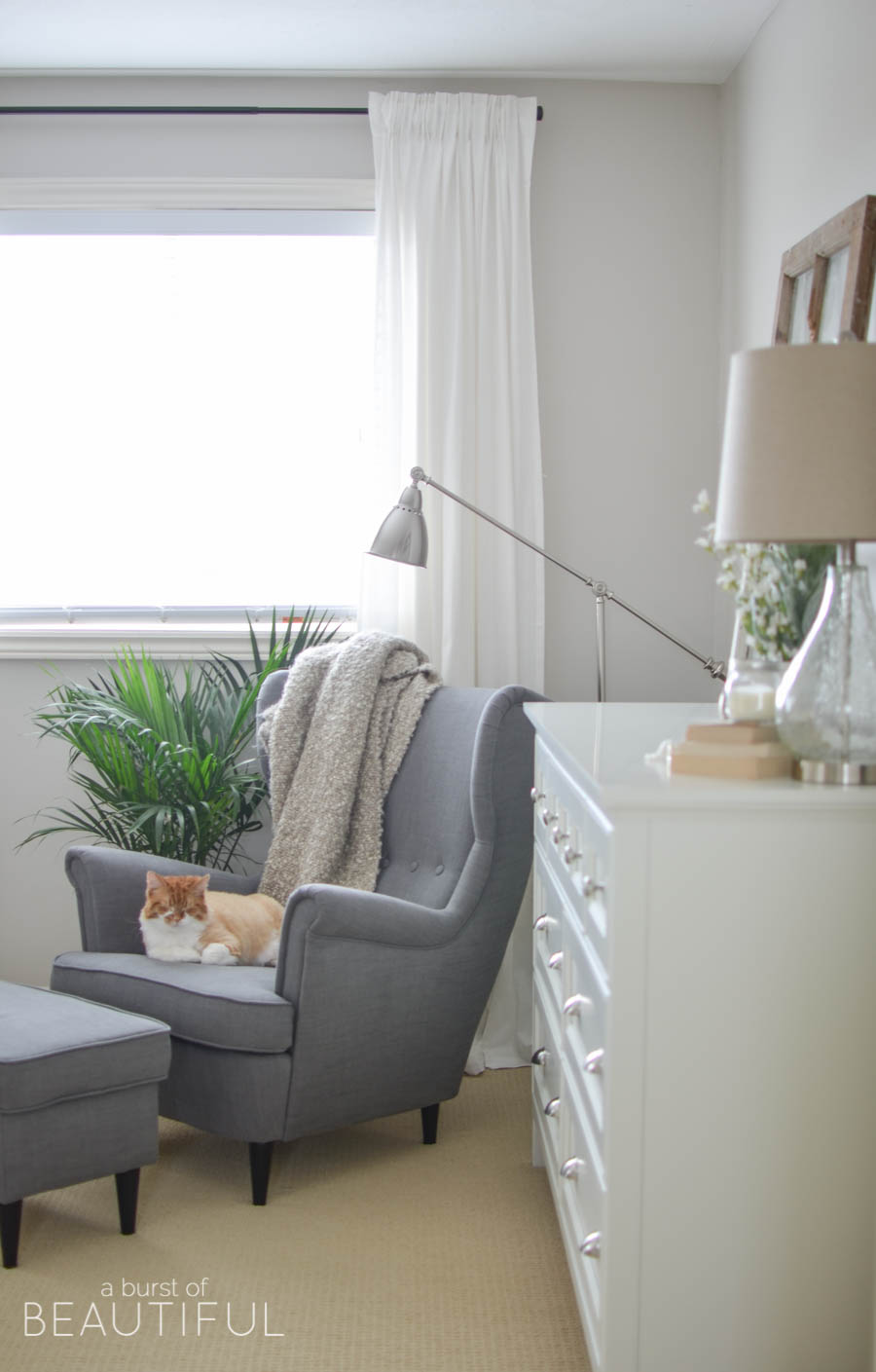 Cozy corner reading nook with modern chair