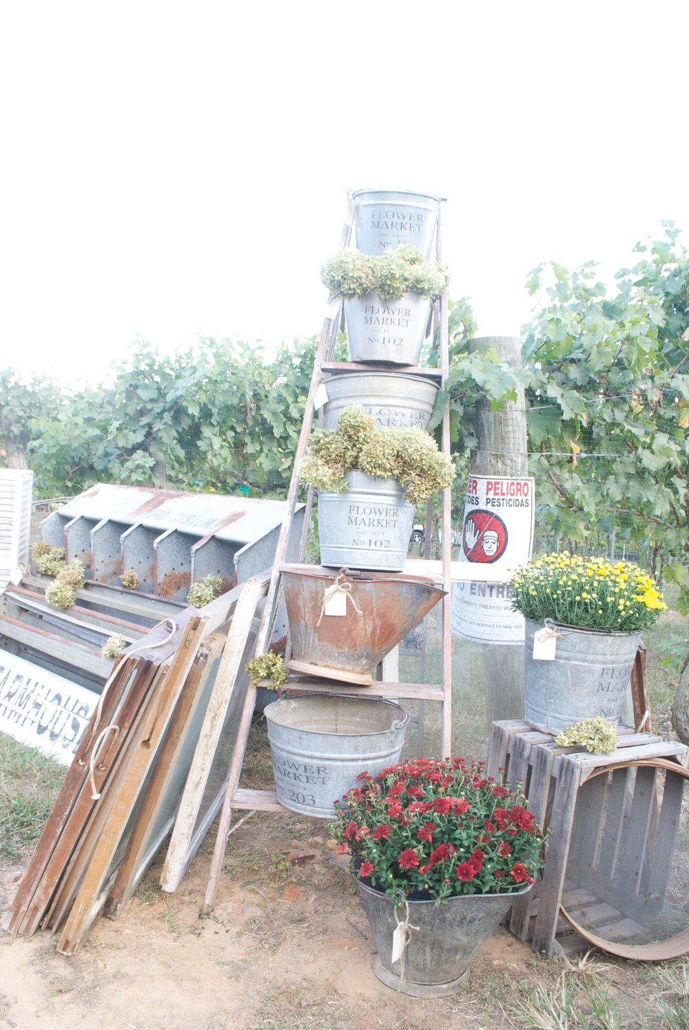 Love the ladder stacked with galvanized buckets