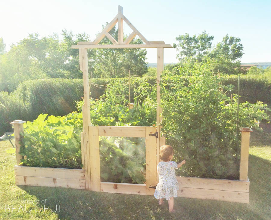 DIY square foot gardening - this is so cute - I love the little door
