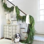 Pets of Christmas & Their Festive Homes