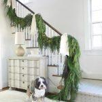 Pets of Christmas & Their Festive Homes