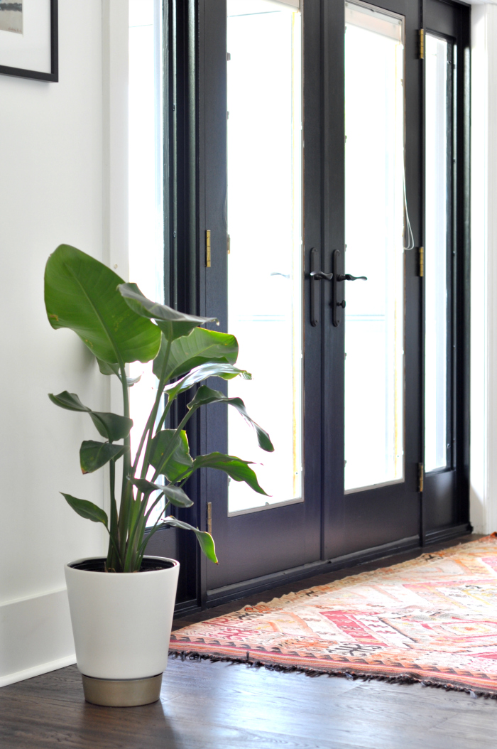 Black interior doors add drama against white walls