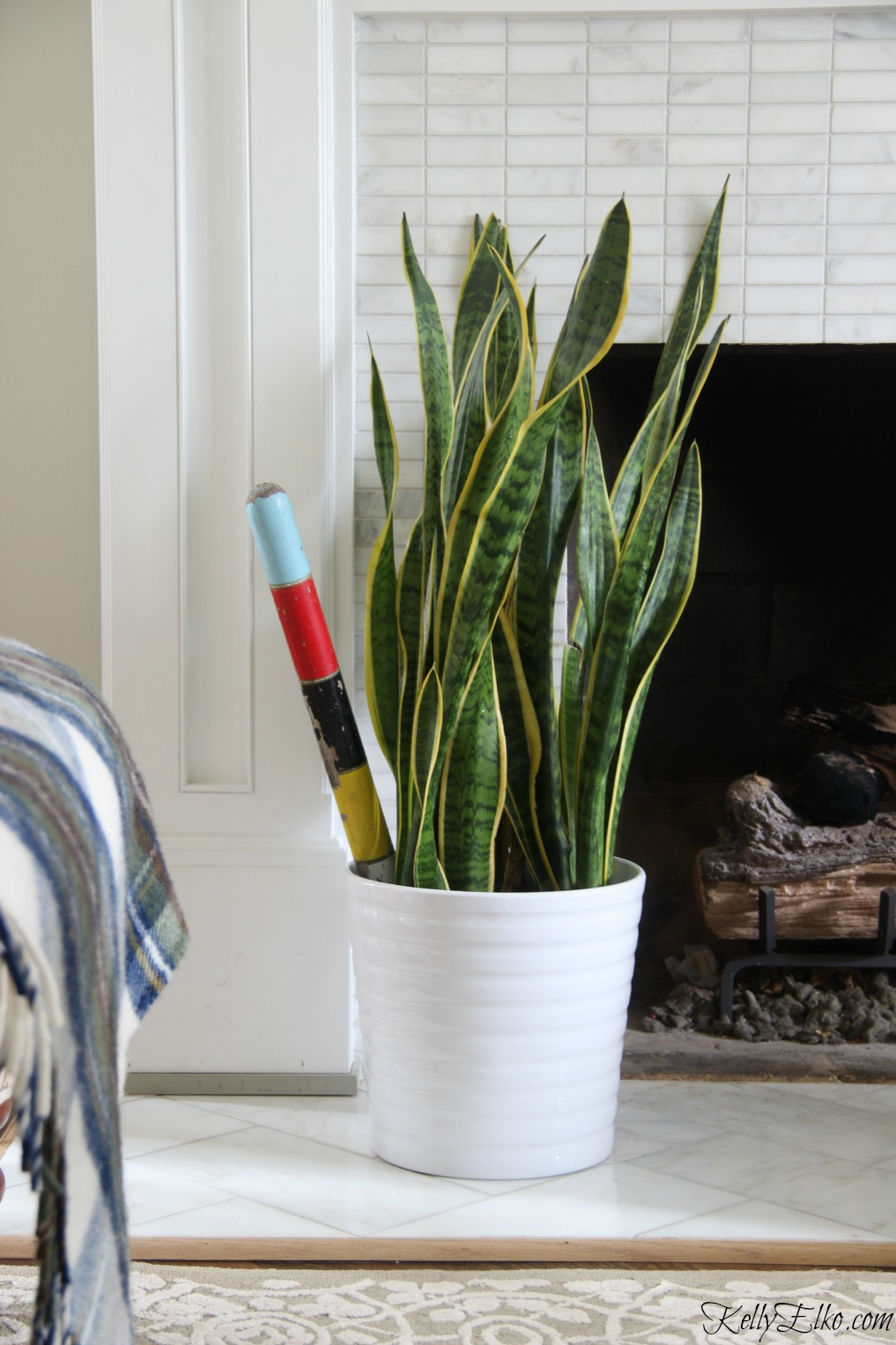 Add an easy to care for snake plant to your house kellyelko.com