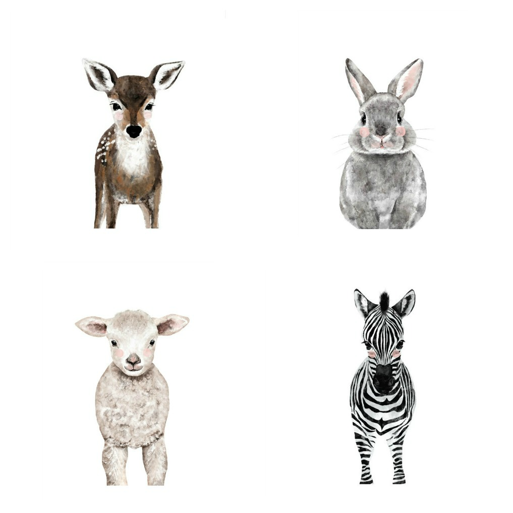 Gallery Wall Ideas - Love these baby animals kellyelko.com