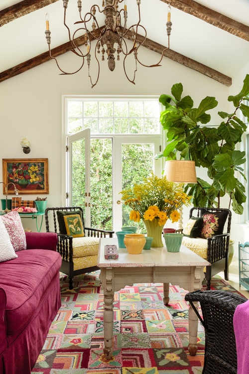 Colorful sun room with giant chandelier and fiddle leaf fig