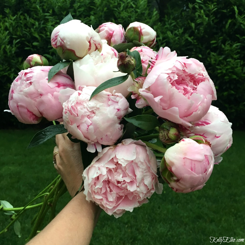 WOW! Free peony printables! This spectacular bouquet of pink peonies is stunning kellyelko.com
