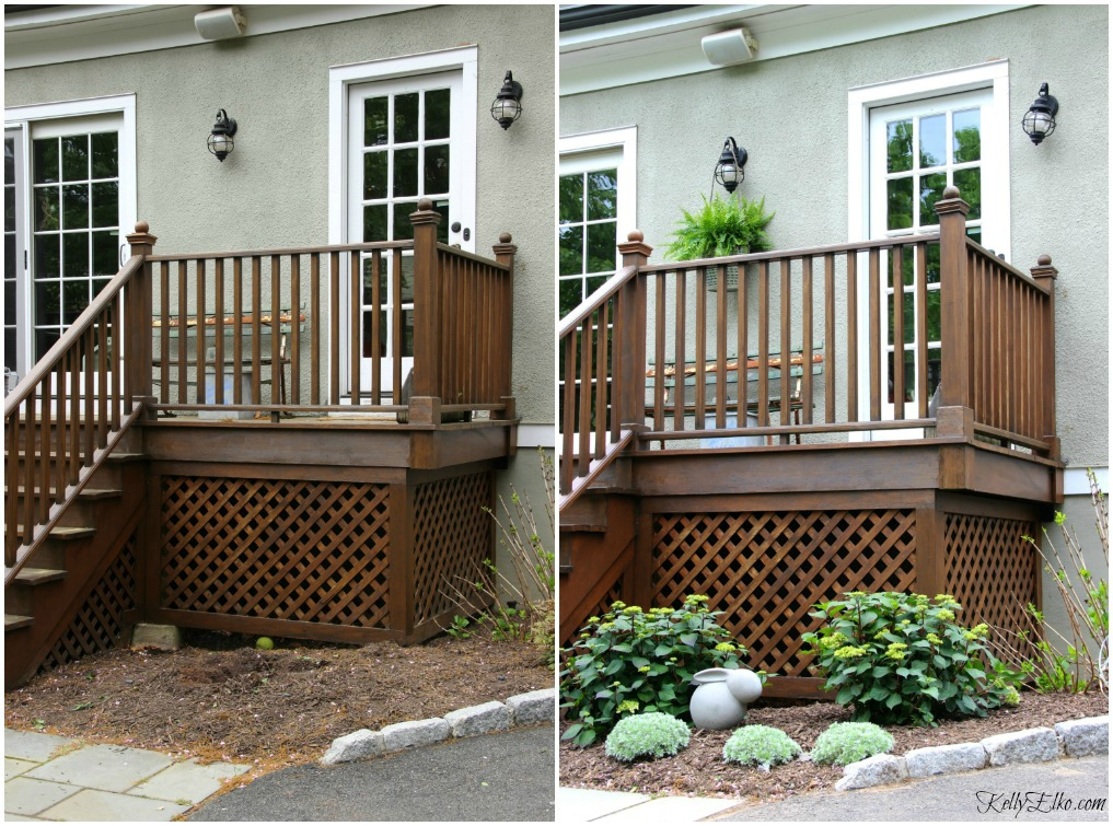 Before and after deck landscaping - Endless Summer hydrangeas are the perfect choice for a pop of color from spring through fall kellyelko.com