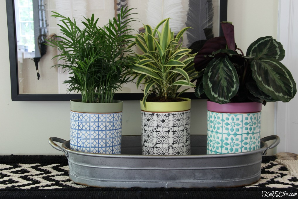 Love this trio of houseplants in colorful planters kellyelko.com