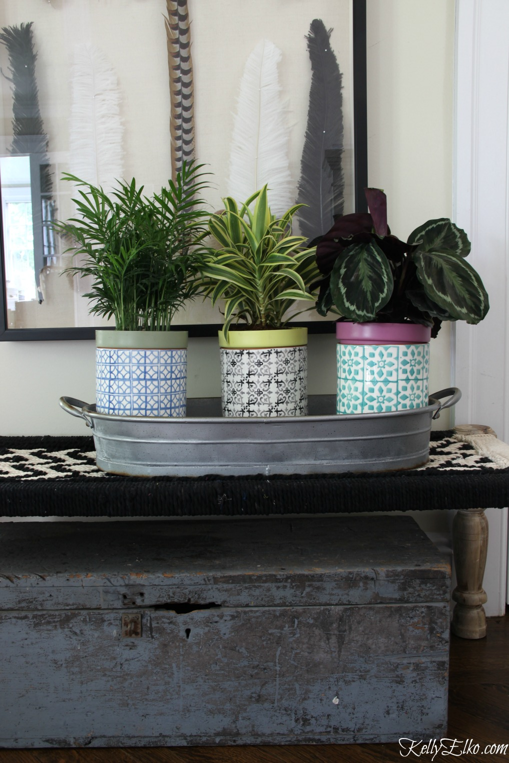 Love this trio of indoor houseplants in colorful pottery kellyelko.com