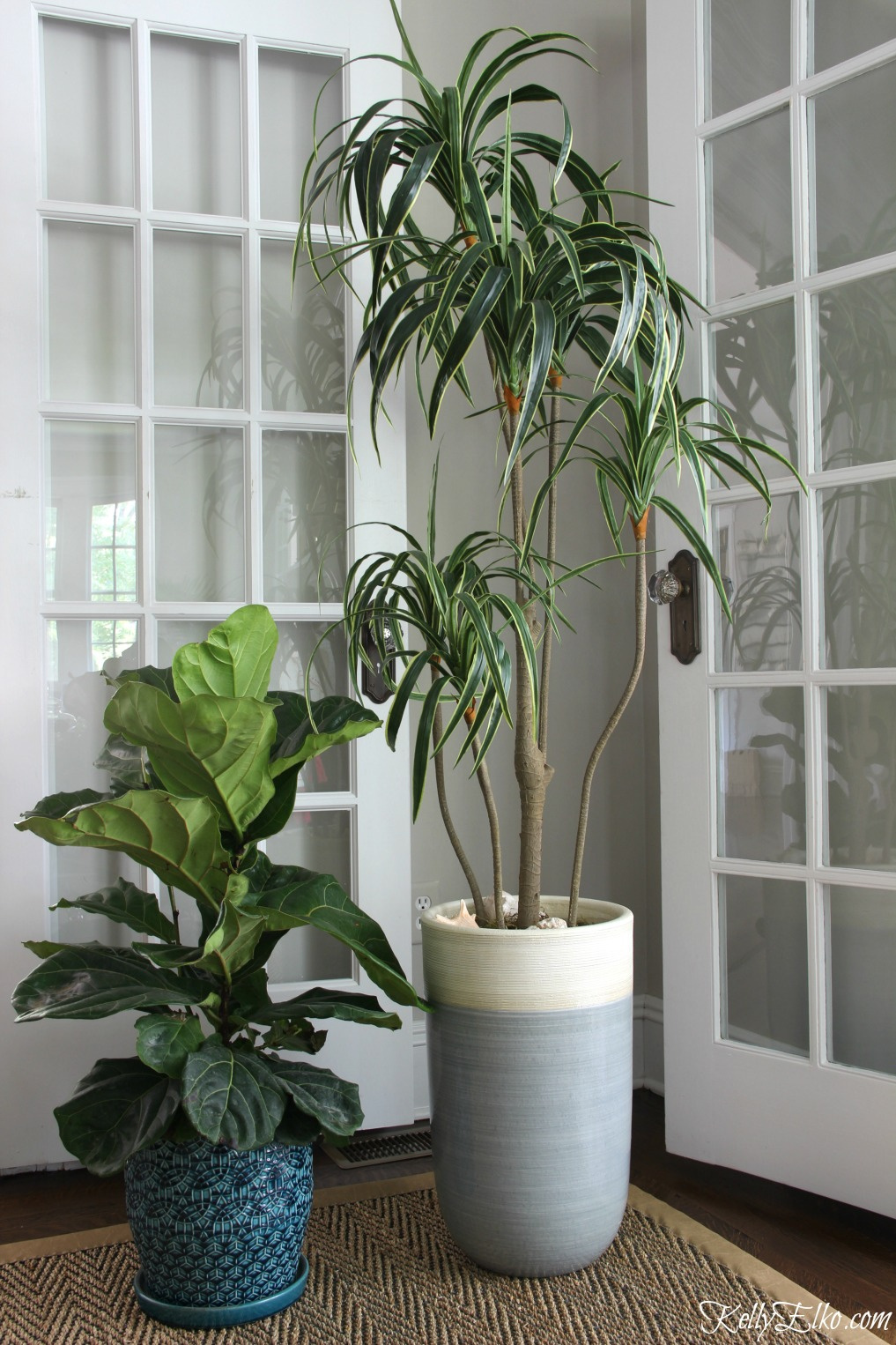 Fiddle leaf fig and palm tree - can you tell which on is faux kellyelko.com