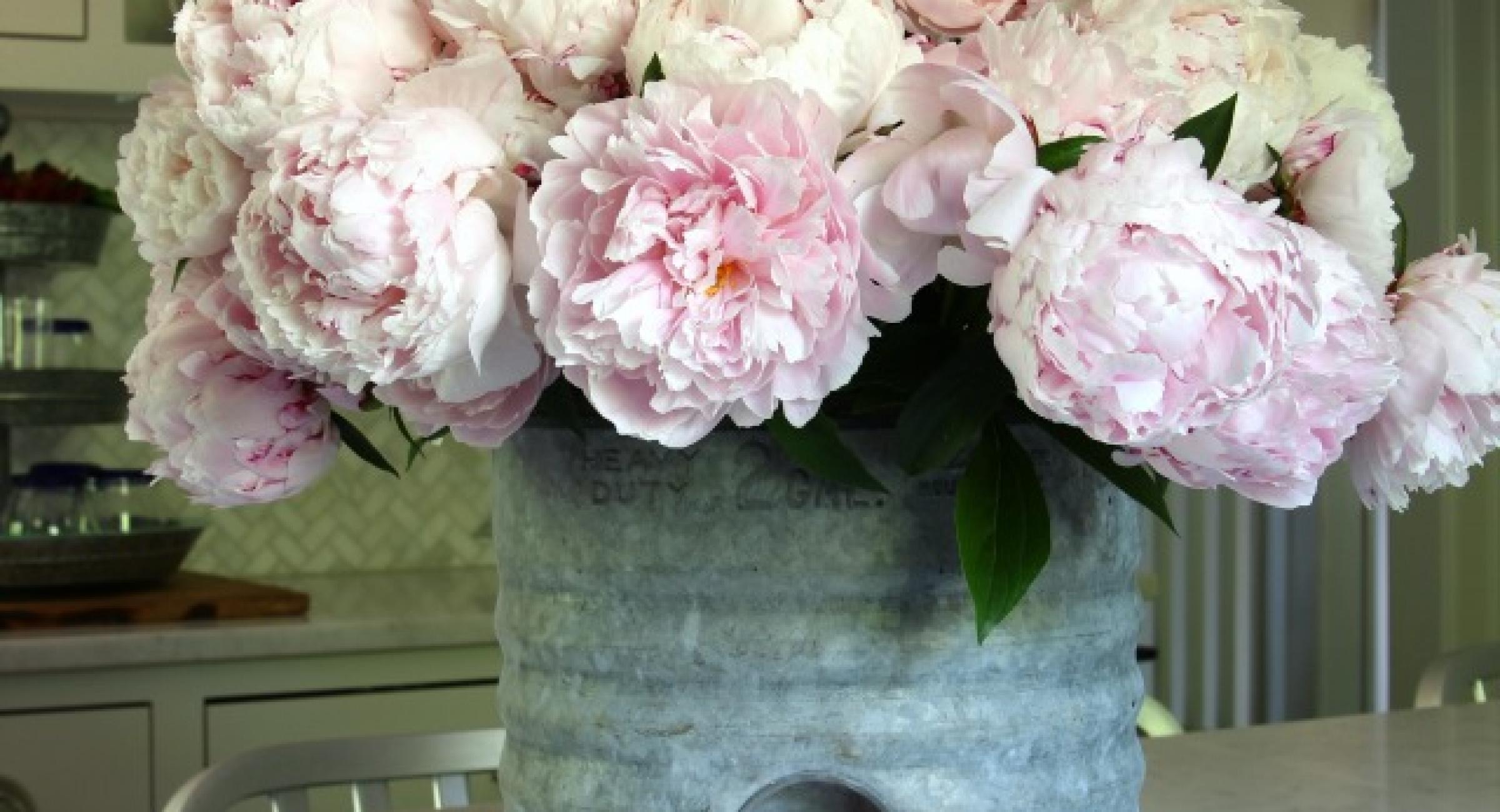 Pink peonies in vintage galvanized water cooler kellyelko.com