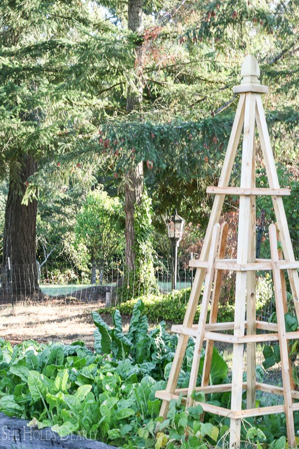 Farmhouse tour - love the gorgeous garden