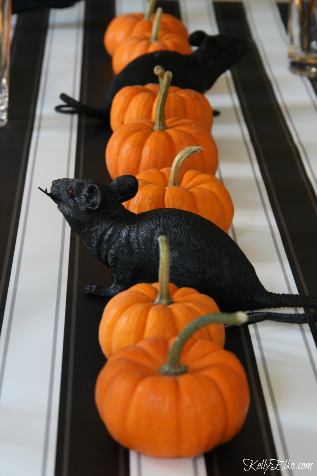 Black and orange Halloween centerpiece - mini pumpkins and rats! kellyelko.com
