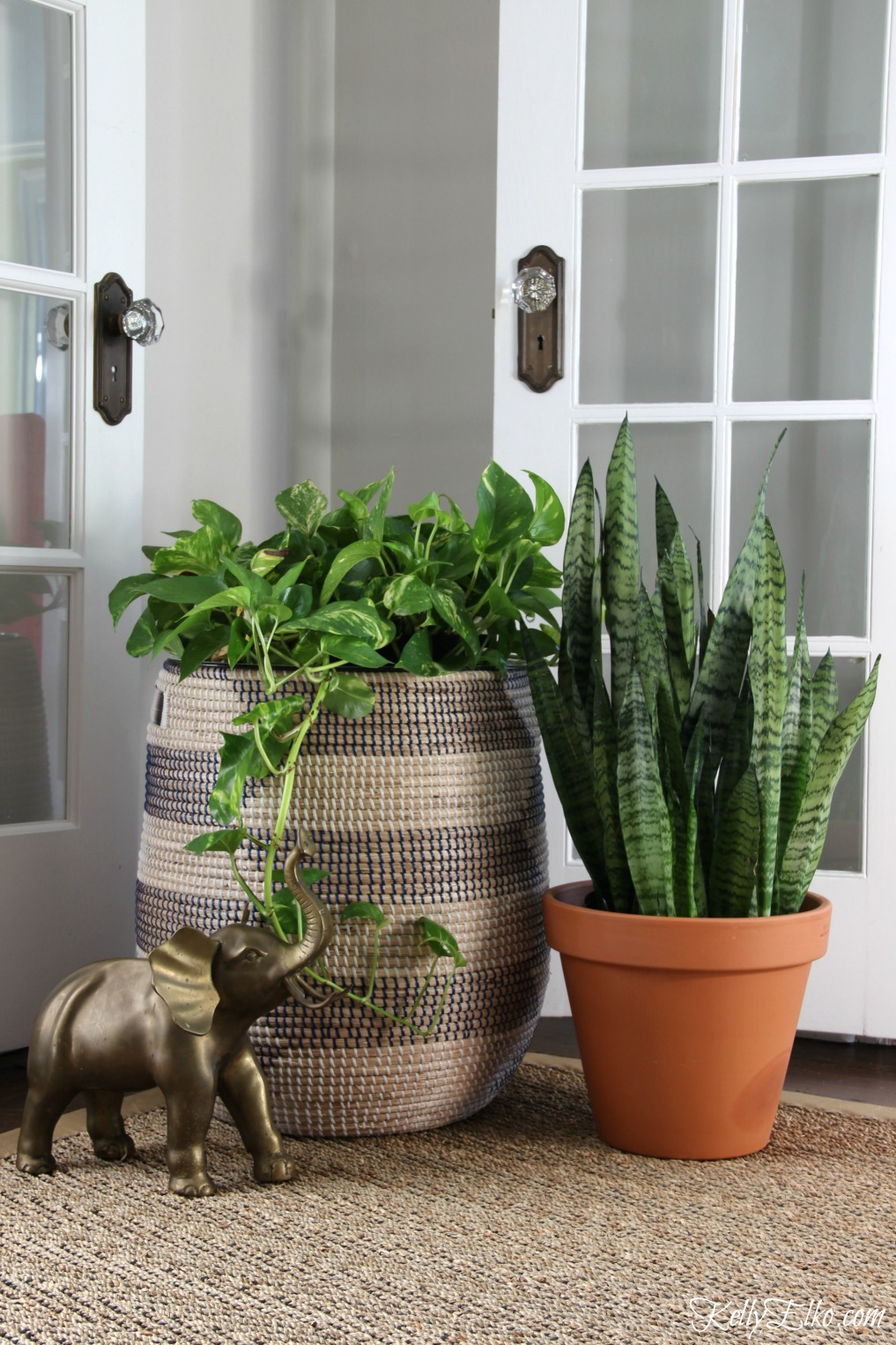 Pothos and snake plants are low maintenance and add life to this living room kellyelko.com