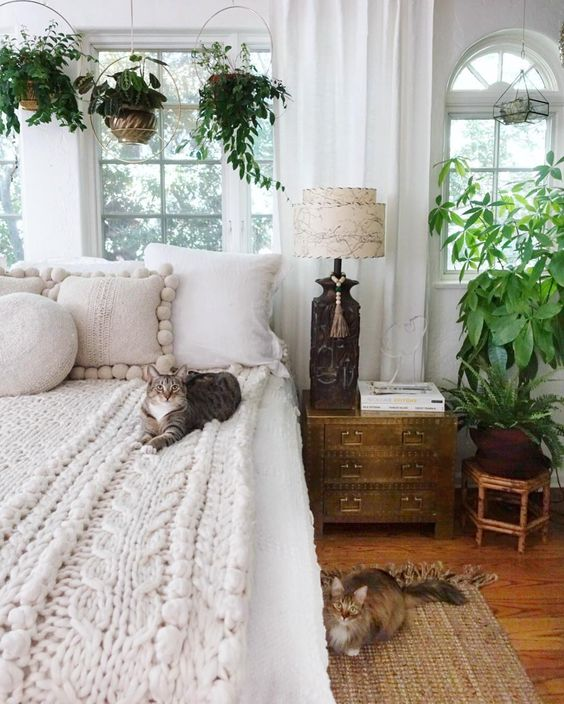 Boho bedroom with plants hanging over bed and mid century lamps